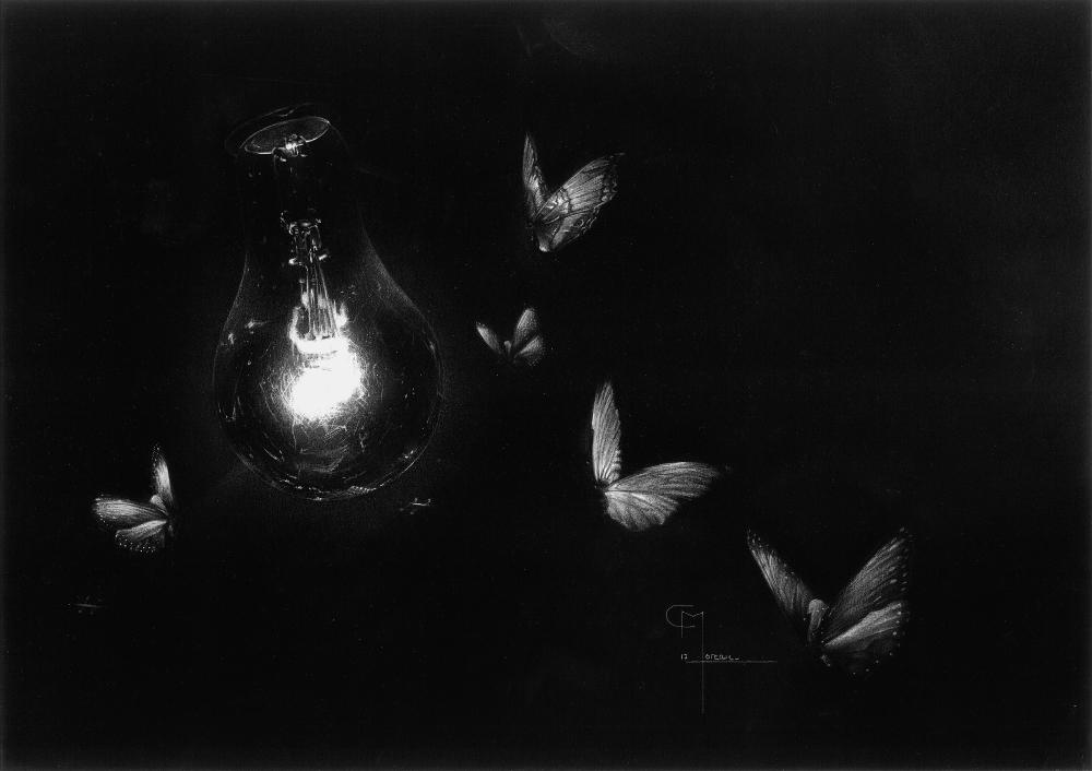 """""""Attirés par la nuit"""", dessin original aux crayons de couleurs, pastel et gouache sur papier noir 180 g au format 29,7 x 42 cm"""