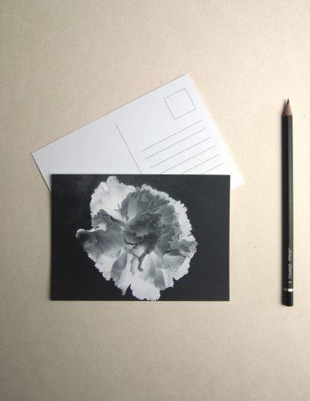 ChristopheMoreau-cartepostale-certitude